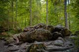 Fototapeta Fototapety do łazienki - boulders in the forest