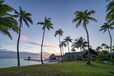 Fototapeta Nowy Jork - Palm trees at the beach, Rangiroa, French Polynesia