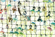 A Fence With Many Multicolored Pacifiers A Place To Leave Your Last Pacifier When You've Grown Up