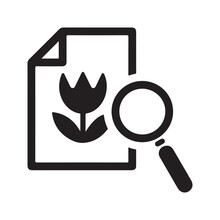 Search Image Icon. Vector And Glyph