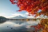 Fototapeta Nowy Jork - Mount Fuji in autumn season, Lake Kawaguchi, Yamanashi Prefecture, Japan
