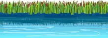 Reed And Cattail Thickets. Swampy Wild Landscape With Water. Horizontally Seamless Composition. Quiet Flow. Overgrown Bank Of A Pond Or River. Isolated Illustration Vector