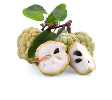 Sugar Apple Or Custard Apple Isolated On White Background With Clipping Path And Full Depth Of Field. Exotic Tropical Thai Annona Or Cherimoya Fruit