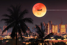 Weather Climate For Transportation And Travel Background With Graph And Chart For Holiday Travel Presentation With Silhouette Palm Trees And Aircraft On Dramatic Full Moon With Purple Twilight Sky .