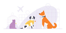 Dogs And Cat Sitting In Crates At The Airport. Pets Air Traveling Concept Flat Vector Illustration.