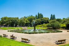 快晴の世田谷公園