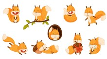 Funny Orange Squirrel Character With Bushy Tail Sitting On Tree Branch And Sleeping On Acorn Vector Set