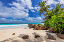 Exotic Sunny Beach And Coconut Palms And Beautiful Stones On Seychelles. Summer Vacation And Tropical Beach Concept.