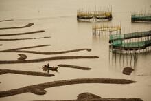A Boat Sailing Across Xiapu's Mudflats At Low Tide