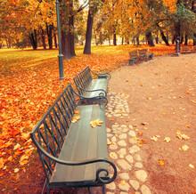 Autumn Landscape, Bench In The Autumn City Park. City Park Bench In The Fall Park, Autumn Trees And Golden Autumn Leaves