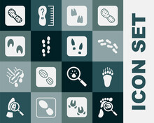 Set Magnifying Glass With Footsteps, Bear Paw Footprint, Human Footprints Shoes, Camel, Horse, And Icon. Vector