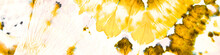 Grunge Dyed Pattern. Motley Foil Backdrop. Active