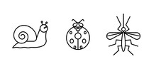 Insect Icon Set. Ladybug, Mosquito And Snail Icon Set. Set For My Insect Family Concept. Linear Icons Set.