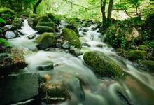 Dans Un Joli Site D'arbres Et De Rochers S'écoule Cette Cascade Au Nom De Cascade De Briscou Ou Brisecou à Autun En Bourgogne Dans La Forêt