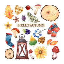 Autumn Clipart From Watercolor Elements Of A Sweater,cuts Of A Tree,mushrooms,twigs Of Berries And Rose Hips,autumn Leaves, Sunflower,lantern,sock With A Scarf,star Anise,heart,spruce Twigs For Design