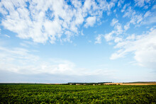Scenic View Of Green Rural Land With White Fluffy Clouds.