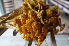 Bunch Of Dried Yellow Yarrow Flowers Hanging Upside Down On Wooden Rack