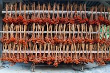 Bunch Of Dried Red Yarrow Flowers Hanging Upside Down On Wooden Rack