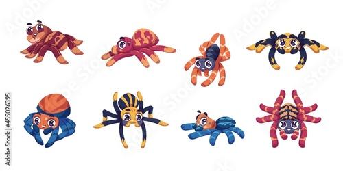 Obraz na plátně Cute spider