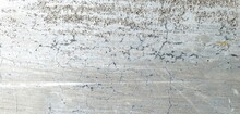 Crackets Wall Texture, Grey Cement Background