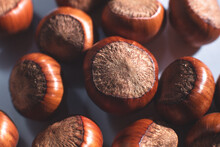 Nuts In Shell, Hazelnuts On A White Background. Heap Or Pile Of Nuts. Nuts Background, Healthy Food