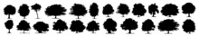 Tree Silhouettes - Red Maple ,sugar Maple, Oak, Poplar, Green Oak, Birch. Silhouette, Tree, Black, Branch, Forest, Park, Set, Leaf, Plant, Crown, Eco, Growth, Image, Land, Lonely, Outline, Palm