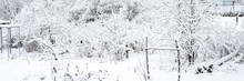 Natural Landscape Of A Snowy White Winter Frozen Forest In A Good Windless Weather In The Village. The Trees And Branches Of The Trees Are Completely Covered With Snow Or Hoarfrost. Banner