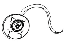 Torn Eye In One Line On A White Background. Element Of Human Zombie Vision. Observing Ball. Stock Illustration For Halloween Postcard.