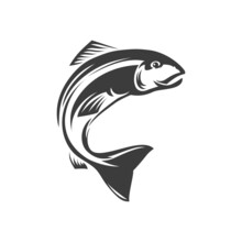 Salmon Ray-finned Underwater Animal Freshwater Fish Isolated Monochrome Icon. Vector Seafood, Marine Food Diet Fish. Fishery Mascot, Trout Fish Grayling Whitefish Char Fishing Sport Trophy