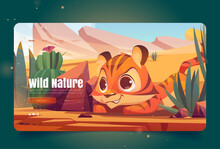 Wild Nature Banner With Tiger Sneaks In Desert. Vector Landing Page With Cartoon Illustration Of Sand Desert With Cactuses, Stones And Cute Tiger. Predator Hides And Hunts In Savanna