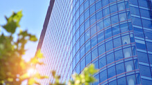 Eco Architecture. Green Tree And Glass Office Building. The Harmony Of Nature And Modernity. Reflection Of Modern Commercial Building On Glass With Sunlight.