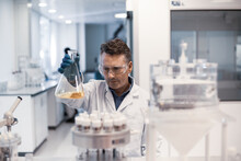 Male Scientist Looking At Conical Flask Sample In A Laboratory