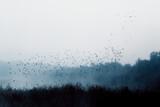 Fototapeta Fototapety do łazienki - mgła nad jeziorem