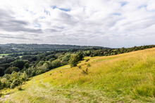 The View Of Surrey Hills Area Of Outstanding Natural Beauty (AONB), From Box Hill, Along The Stepping Stone Walk.