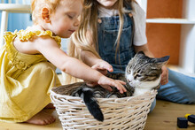 Happy Baby Girls Stroking Cute Funny Cat Lying In Straw Basket At Childish Room With Wooden Toys