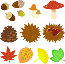 どんぐり、キノコ、松ぼっくり、毬栗、紅葉