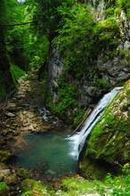 Galbena Waterfall Flowing Down A Cliff Through Green Moss. This Is The Entrance Into Galbena Gorges, A Narrow Rocky Canyon In Apuseni Mountains. Carpathia, Romania.
