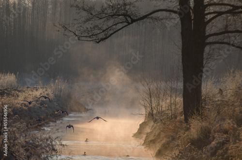 Mgła unosząca się znad wody, zimą o wschodzie słońca