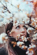 Woman Standing Beside Flower Tree