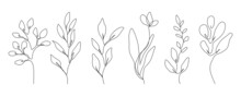 Vector Set Of Hand Drawn Line Art Botanical Elements, Leaves, Flowers. Minimalist Trendy Contemporary Design Perfect For Wall Art, Prints, Social Media, Posters, Invitations, Branding Design.