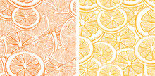 Citrus Patterns. Eps Vector Illustration