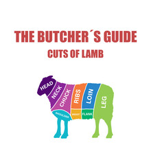 Cut Of Beef Set. Poster Butcher Diagram And Scheme - Lamb. Colorful Vintage Typographic Hand-drawn On White Background For Butcher Shop. Illustration