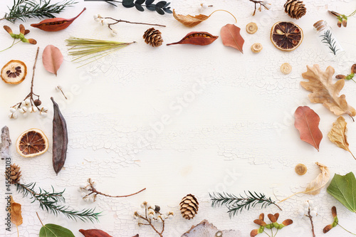Top view image of autumn forest natural composition over wooden white background .Flat lay