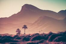 Coast Landscape In Murcia Spain