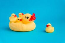 Cute Duck Toys In Blue Studio