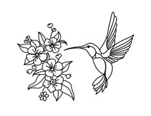 Hummingbird, Wreath With Peony, Flying Bird, Vector Illustration