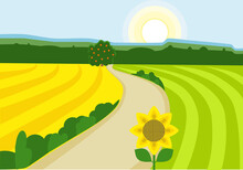 Vector Illustration Of A Rural Landscape With Green And Yellow Fields, Blue Sky, Winding Road And Forest.