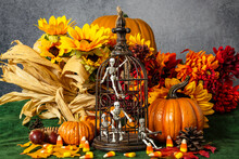 Skeletons Locked In Bird Cage For Halloween With Pumpkins And Candy Corn
