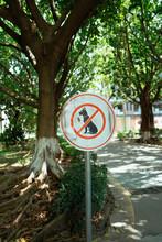 No Dog Walking Sign