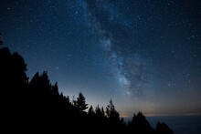 Milky Way With The Silhouette Of A Forest